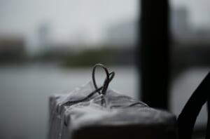 ライカで撮影した3枚めの写真
