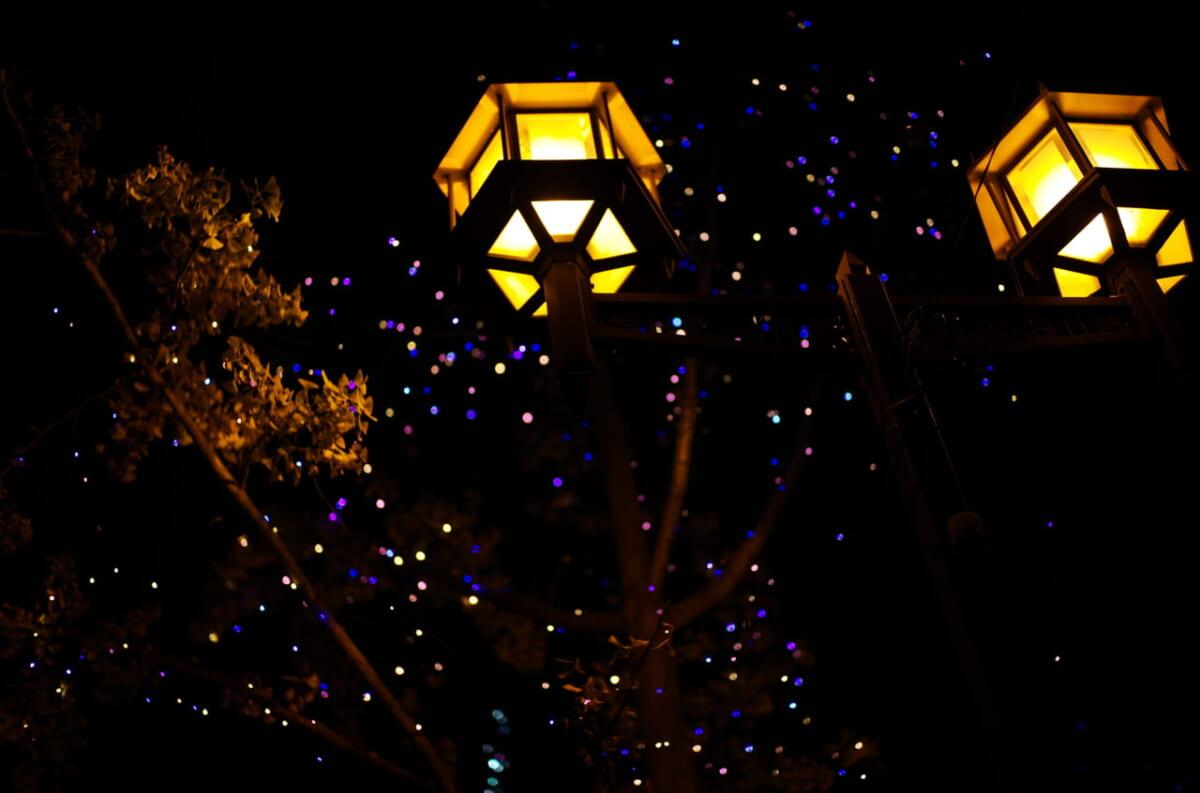 御堂筋ライトアップで撮影した2つの街灯