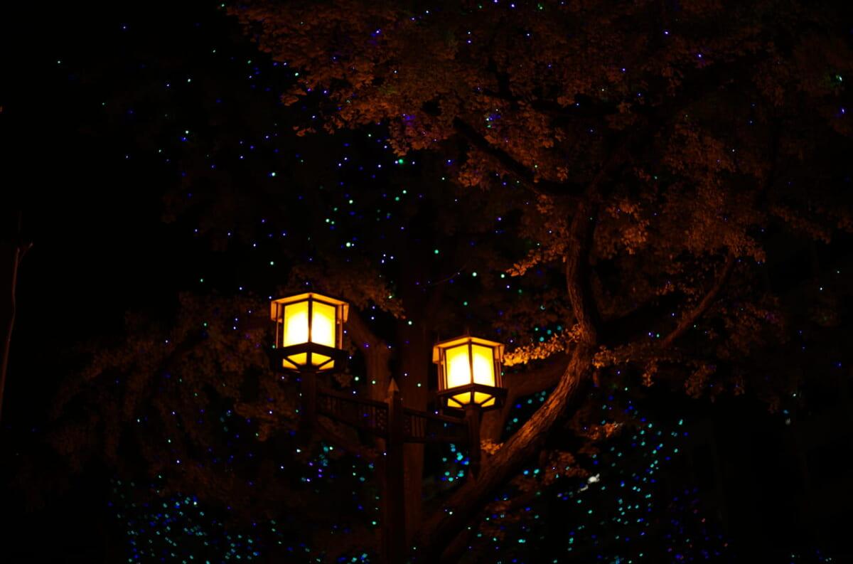 御堂筋のきれいな街灯と街路樹