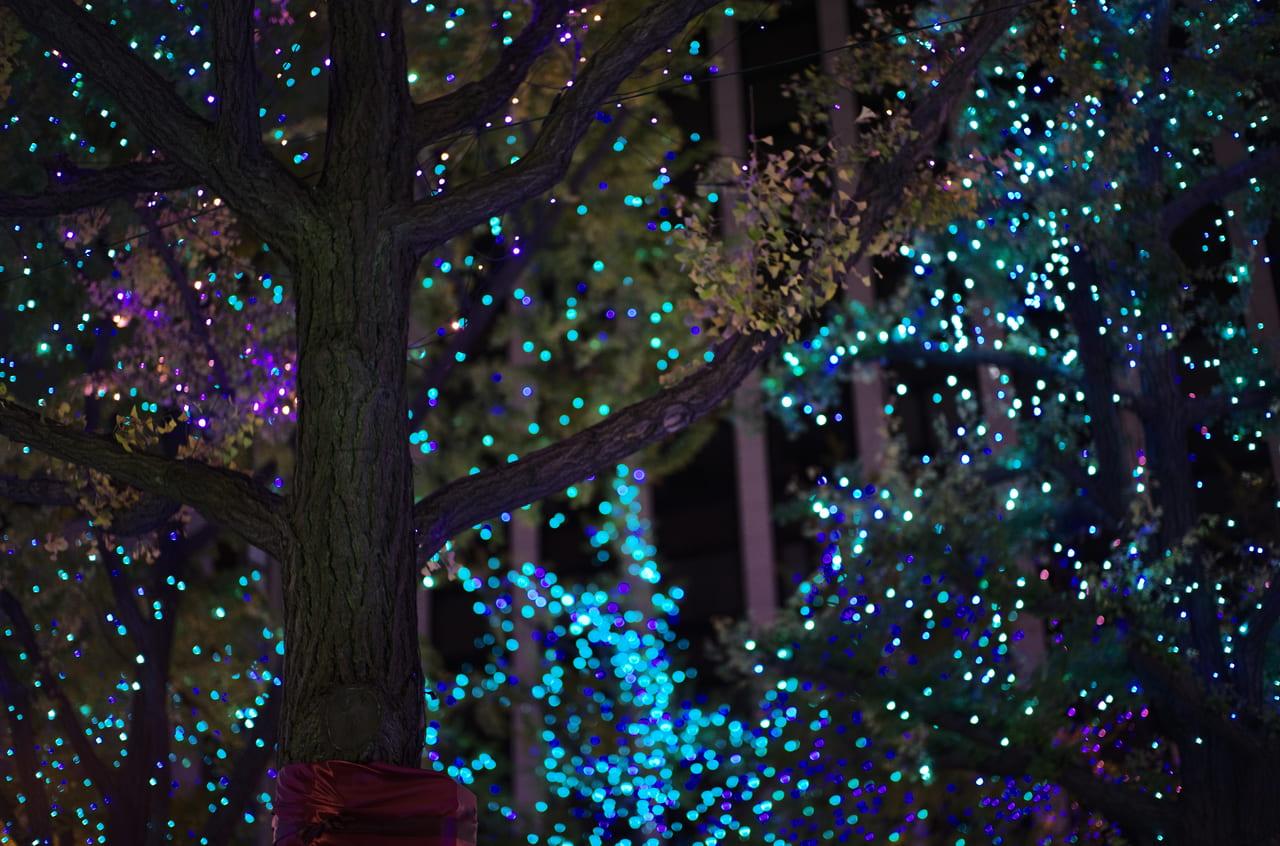 美しく水色に輝くライトアップと樹木