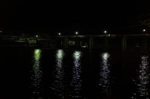輝かしい神通川の水面