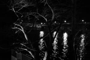 モノクロで撮影した、夜の神通川と樹木