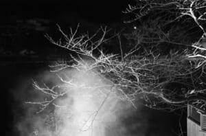モノクロで撮影した湯けむりと樹木