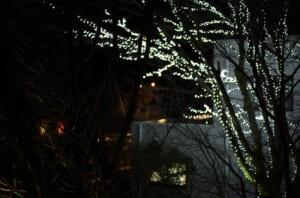 装飾された樹木と旅館の駐車場