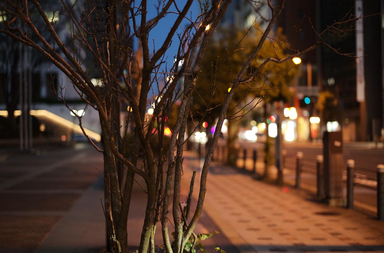 美しい夜景と道路