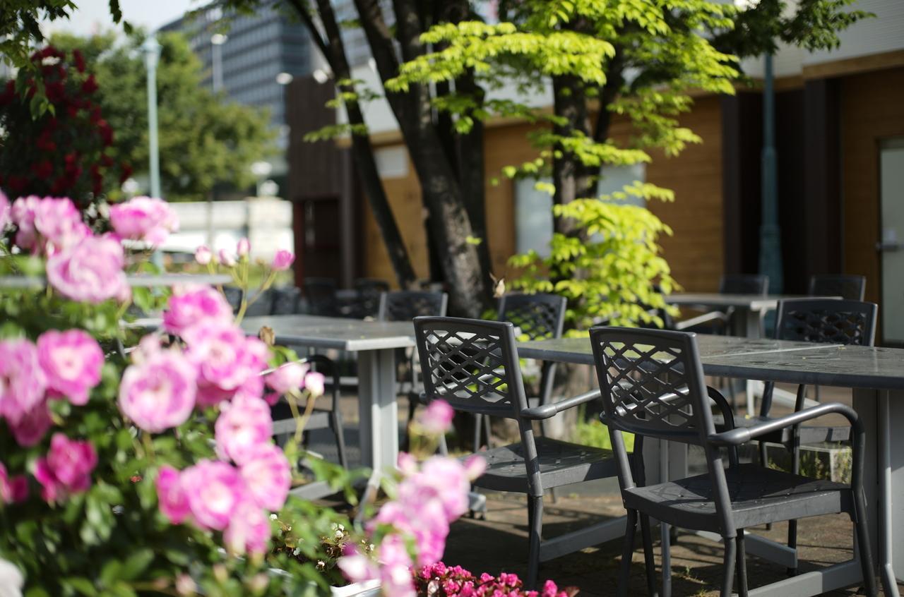 ボケたバラとカフェの椅子