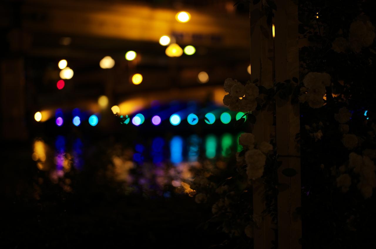 美しいボケと夜の橋