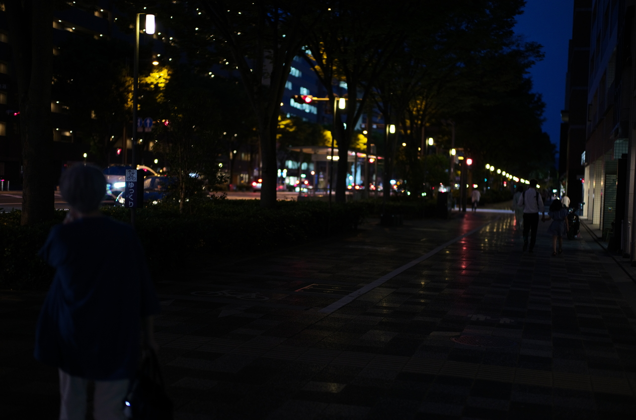 素敵な御池通の夜景