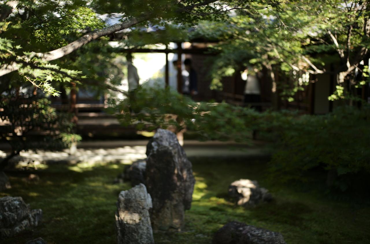 建仁寺の庭の様子